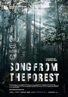"Plakatmotiv ""Song From The Forest"""
