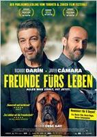 "Plakatmotiv ""Freunde fürs Leben"""