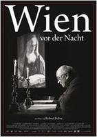 """Plakatmotiv """"Wien vor der Nacht"""""""