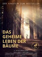 "Plakatmotiv ""Das geheime Leben der Bäume"""